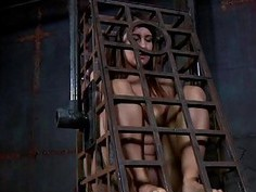 Gagged cutie with clamped nipps receives pleasure