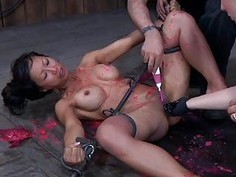 Charming babes nipps receives painful torturing